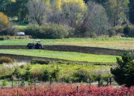 Spring plowing at FinnRiver Farm.
