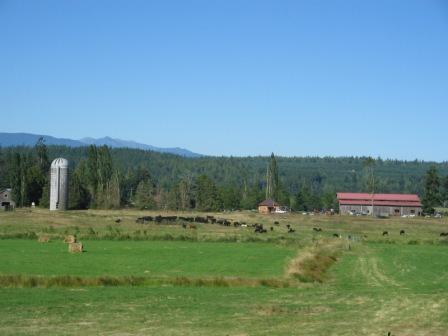 Glendale Farm, Chimacum