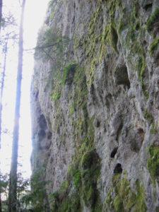 Tamanowas-rock1
