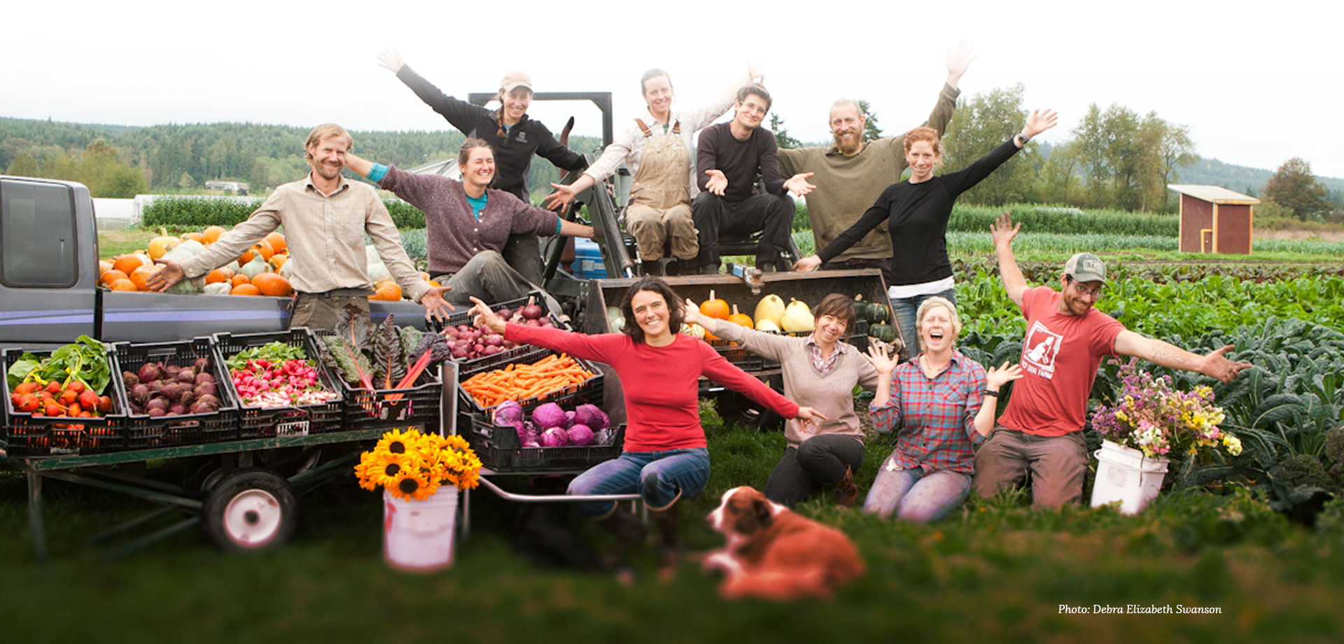 carousel-farmers