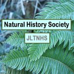 Natural History Society