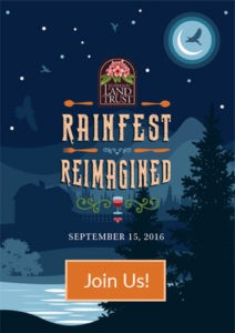 Rainfest Reimagined