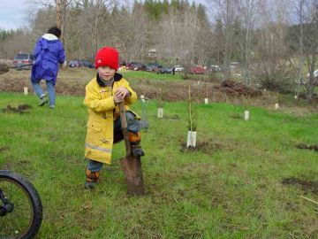 Young volunteer at Tarboo work party